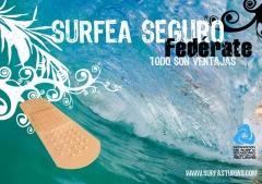 20080417115817-surfeaseguro.jpg